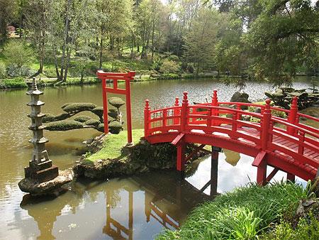 Stage au parc oriental de maul vrier d 39 acanthes et d for Jardin japonais cholet